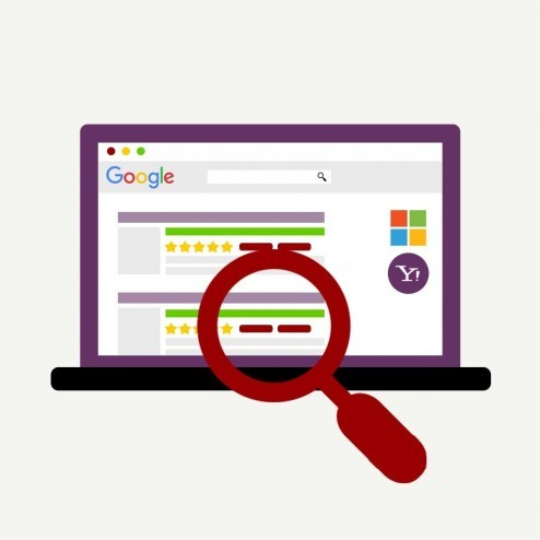 Rich Snippets & Cards