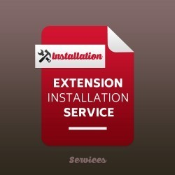 Extension Installation or Upgrade Service